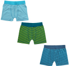 Maxomorra ~ organic cotton boxer shorts in green and blue stripes